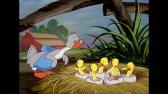 تام و جری | بهترین Little Quacker | کارتون کلاسیک  | کودکان و نوجوانان