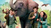 فیلم باغ وحش زیرنویس فارسی Zoo