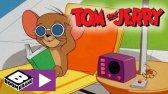دانلود فیلم کارتونی تام و جری این قسمت: تابستان وحشتناک