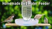 ساخت آبخوری پرندگان