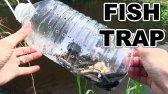 ساخت تله ماهی با بطری پلاستیکی
