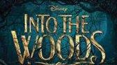 فیلم سینمایی ترسناک به سوی جنگل