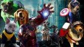 انیمیشن جذاب سگهای انتقام جو 2019با دوبله فارسی
