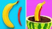 27 راه حل جالب برای باغچه شما