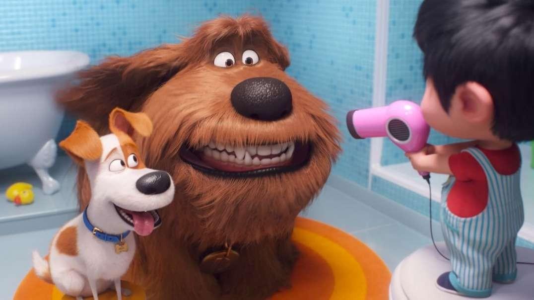 انیمیشن زندگی پنهان حیوانات خانگی 2 دوبله فارسی The Secret Life of Pets 2 2019