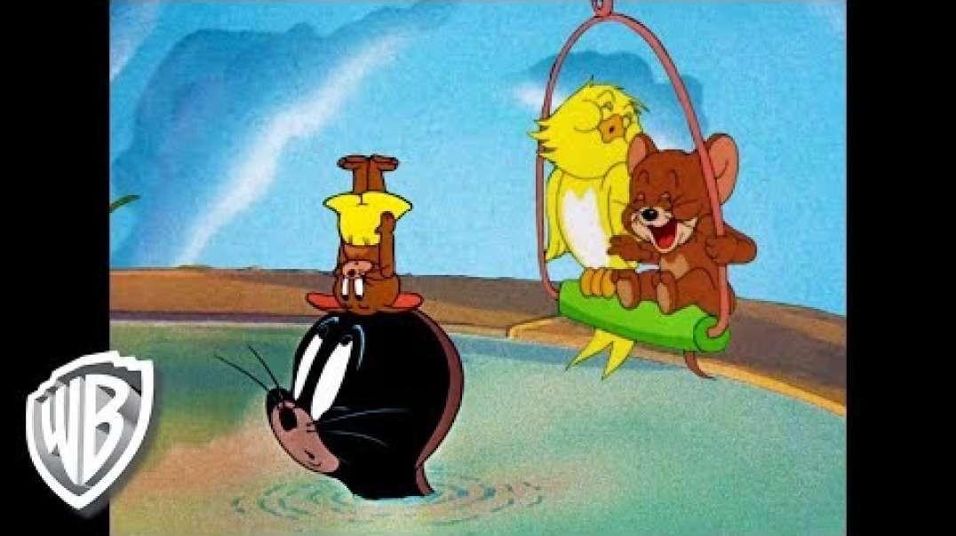 دانلود فیلم کارتونی تام و جری این قسمت: جری و دوستانش