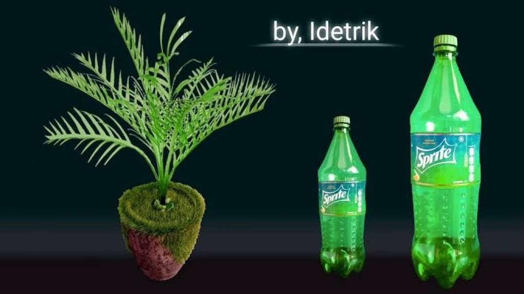 ساخت گیاهان زینتی با بطری های پلاستیکی