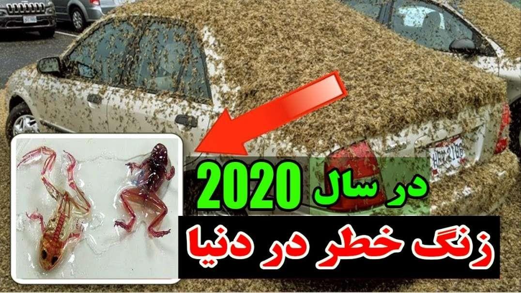 ساخت موجودات عجیب در سال 2020